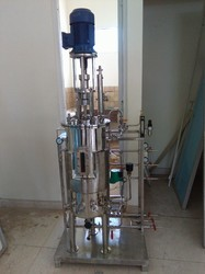 Lab Scale InSitu Sterilizable Fermenters | Bio Age Equipment & services  | Lab Scale InSitu Sterilizable Fermenters in Hyderabad, Lab Scale InSitu Fermenters in Hyderabad, Best Lab Scale InSitu Fermenters in Hyderabad, Top Lab Scale InSitu Fermenters  - GLK2562