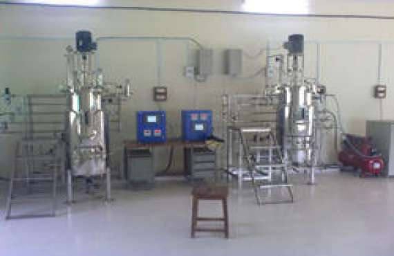 Bio Age Equipment & services , Twin Fermenter Pilot Scale in Jaipur, Best Twin Fermenter Pilot Scale in Jaipur, Top Twin Fermenter Pilot Scale in Jaipur, Twin Fermenter Pilot Scale Manufacturer in Jaipur,