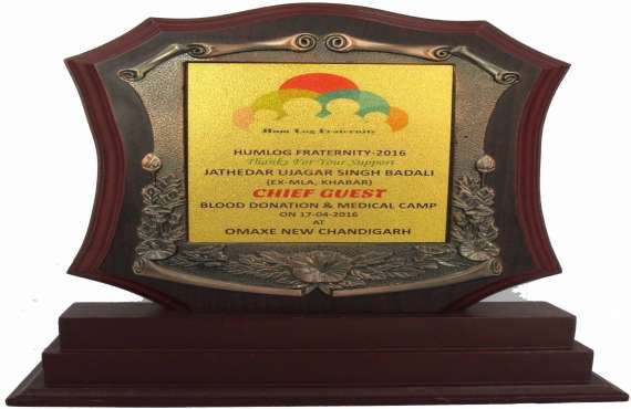 WOODEN  38  , Wooden trophy manufacturer in Chandigarh