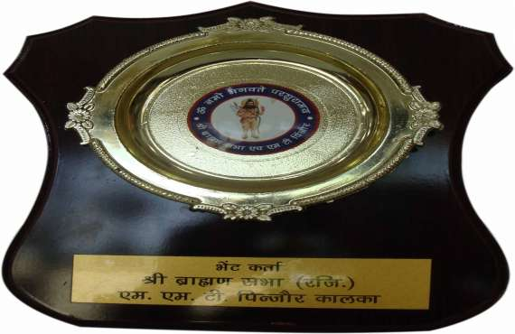 WOODEN 525                              , wooden trophy manufacturer in Zirakpur