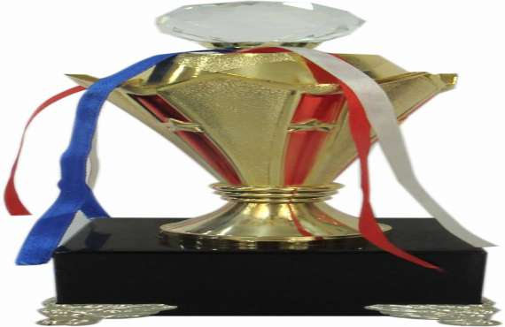 ABS MM 27  , ABS Trophy manufacturer in Chandigarh