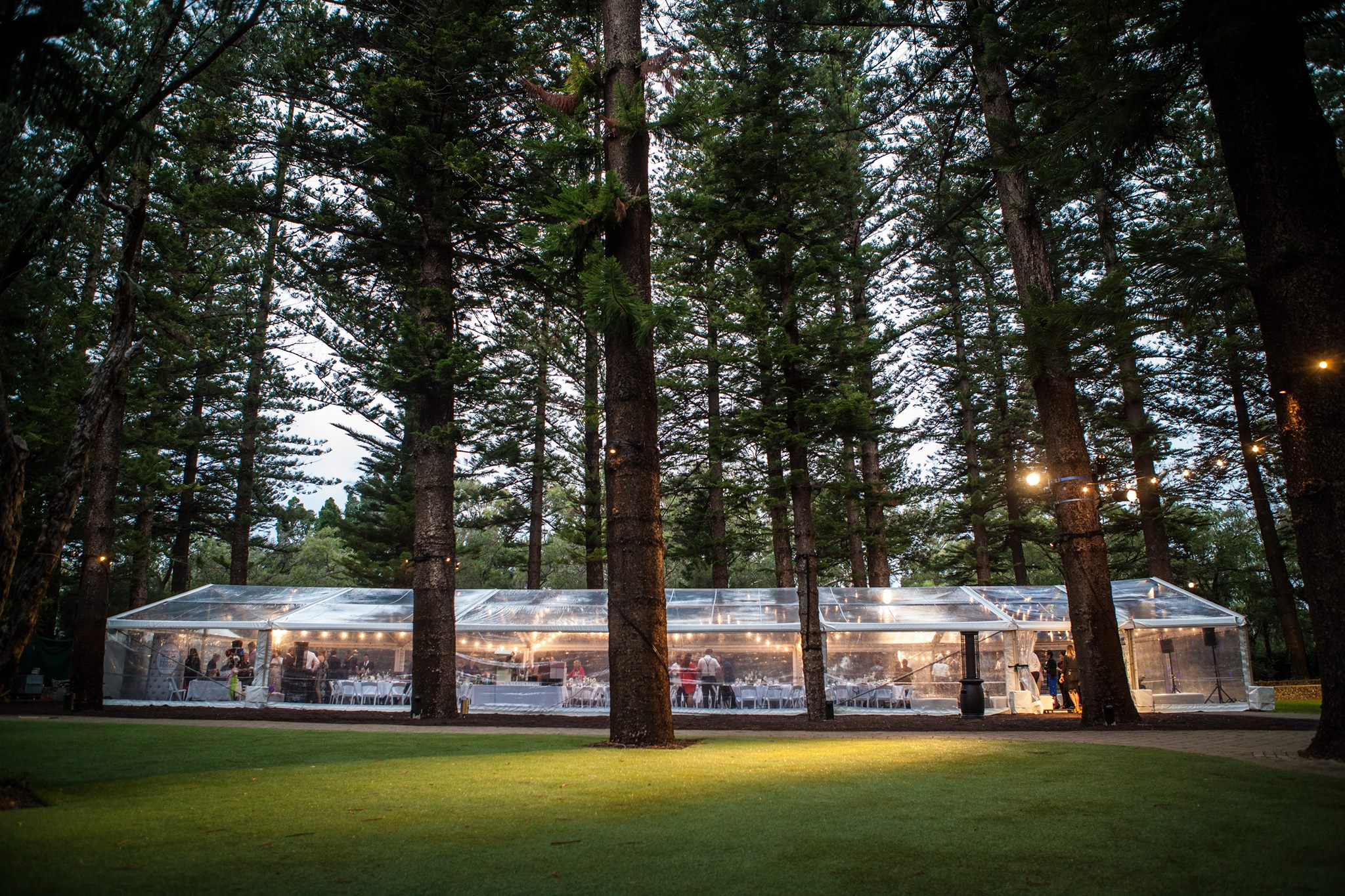 Corporate catering in Shimla  | Red Tag Caterers | Corporate catering in Shimla, best corporate caterers in Shimla, party caterer in Shimla, top corporate caterer in Shimla,  - GL43912
