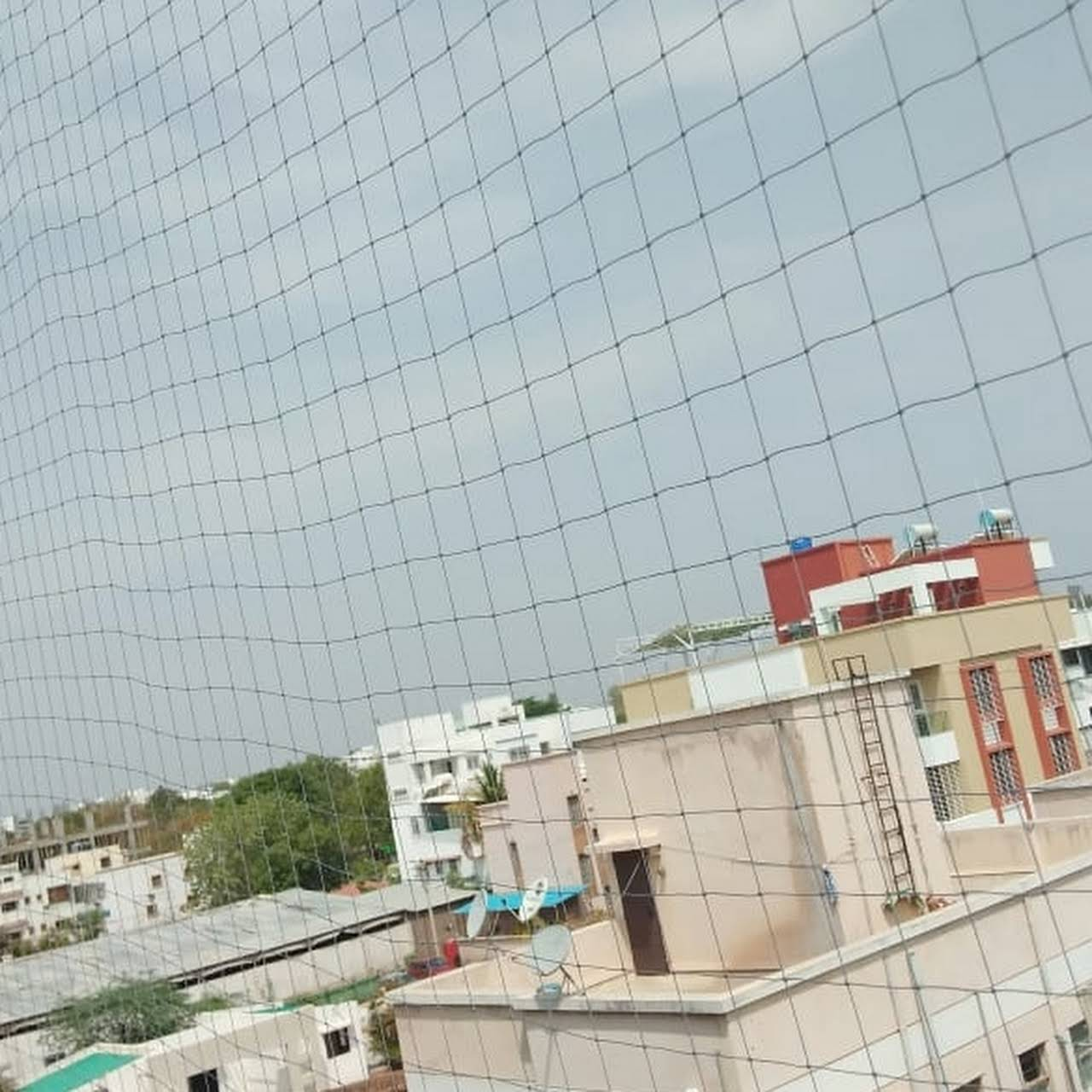 Executive Bird Netting Services, bird netting in lonavala, bird netting services in lonavala, bird control in lonavala, bird control services in lonavala, bird control services in khandala, bird netting services in khandala,best,top.
