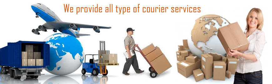 Dhl Courier In Egmore , Mobile No9551070806 By 2. 1999 Acura Integra Type R Shaw Remote Desktop. Catholic Online Schools Commercial Rent Space. Whittaker Carpet Cleaning Near Me Gas Station. Consumer Reports Best Cell Phone. Nyc Best Boutique Hotels Time Warner 29 Palms. Medical Assistant Salary Ny Credit Card Apps. What Is An Applicant Tracking System. Missouri College Football College For Artists