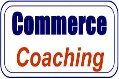 SKYLIGHT INSTITUTE OF COMMERCE, commerce coaching in panchkula,best commerce coaching in panchkula,top commerce classes in panchkula