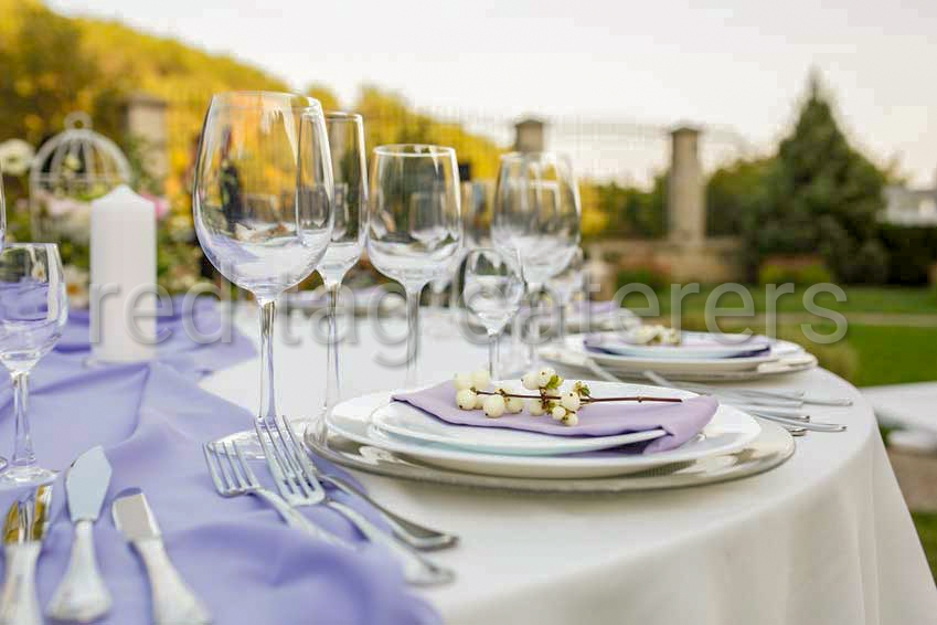 Corporate catering in Chandigarh,  | Red Tag Caterers | Corporate catering in Chandigarh, outdoor corporate catering in Chandigarh, corporate party catering in Chandigarh,  - GL43234