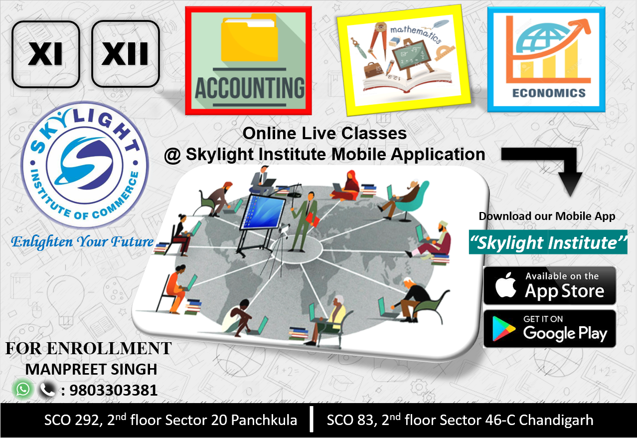 SKYLIGHT INSTITUTE OF COMMERCE, Onlince classes for commerce