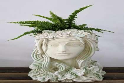 EMPHASIS LANDSCAPE & DESIGN, /flowering-pot-wholesaler-in-bangalore-plastic-pot-wholesaler-flowering-plants-wholesalers-in-bangalore/