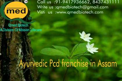 Qmedbiotech, Ayurvedic Pcd Franchise in Assam, Assam Ayurvedic Pcd Franchise, Pcd Ayurvedic Franchise in Assam, Top 10 Ayurvedic Pcd Franchise in Assam, Assam based Ayurvedic Pcd Franchise companies