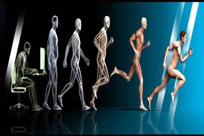 Aastha Physiotherapy & Fitness Centre, Physiotherapy and fitness center in Jabalpur, best Physiotherapy and fitness center in Jabalpur, fitness center in Jabalpur, acupressure professional in Jabalpur, best acupressure professional in jbp