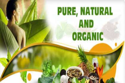 Qmedbiotech, Ayurvedic PCD franchise in Begusarai, Ayurvedic PCD Franchise Company in Begusarai, top Ayurvedic PCD franchise in Begusarai, Ayurvedic PCD pharma franchise in Begusarai, Ayurvedic PCD in Begusarai