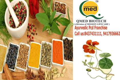 Qmedbiotech, Ayurvedic Company in Orrissa, Herbal pcd Franchise in Orissa, Orissa ayurvedic pcd companies, pcd franchise in ayurvedic products, top 50 ayurvedic companies in india, ayurvedic franchise company in o