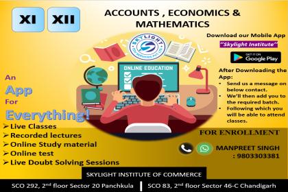 SKYLIGHT INSTITUTE OF COMMERCE, Online Classes for commerce