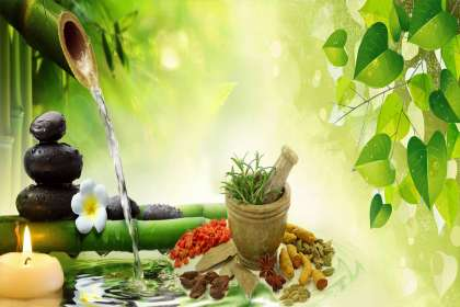 Qmedbiotech, Ayurvedic PCD pharma franchise in Agra, best Ayurvedic PCD pharma franchise in Agra, Ayurvedic  pharma franchise in Agra