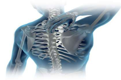 Aastha Physiotherapy & Fitness Centre, back pain treatment in Jabalpur, back pain clinic in Jabalpur, best back pain doctor in Jabalpur, back pain physiotherapy in Jabalpur, physiotherapist for back pain in Jabalpur, best physio in Jbp
