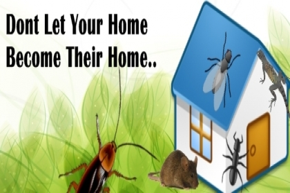 DOCTOR PEST SOLUTIONS, BEST PEST CONTROL IN CHANDIGARH,PEST CONTROL IN CHANDIGARH,REGISTERED PEST CONTROL COMPANY IN CHANDIGARH,PEST CONTROL SERVICES IN CHANDIGARH