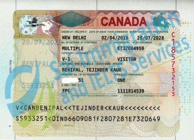 Sai Immigration IELTS Services
