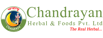 CHANDRAYAN HERBAL AND FOOD PVT. LTD